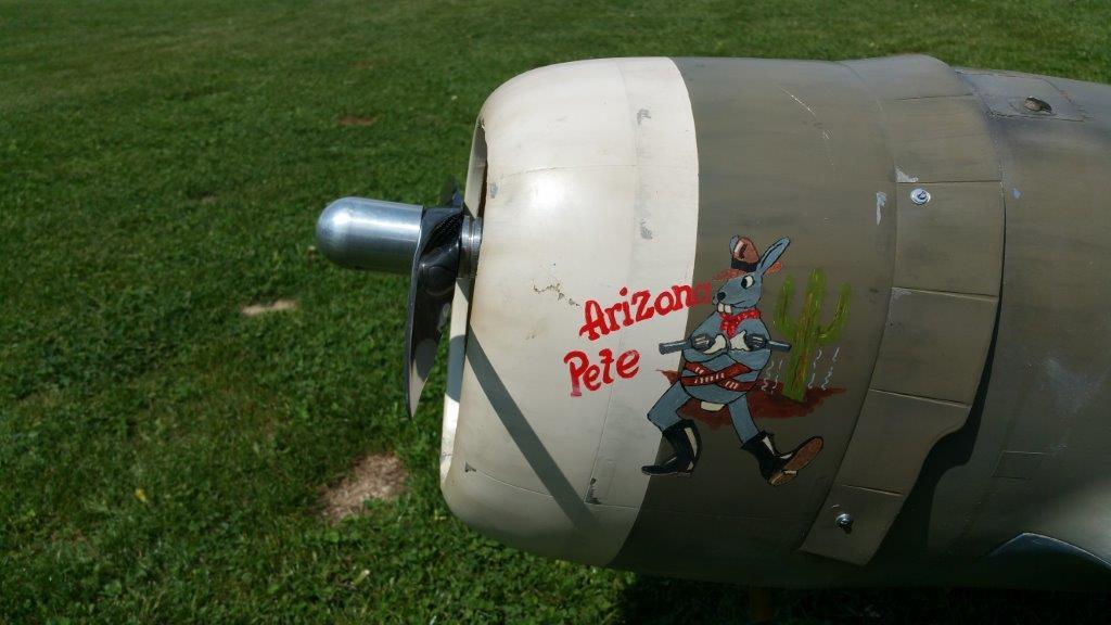 bWerner_P-47.jpg