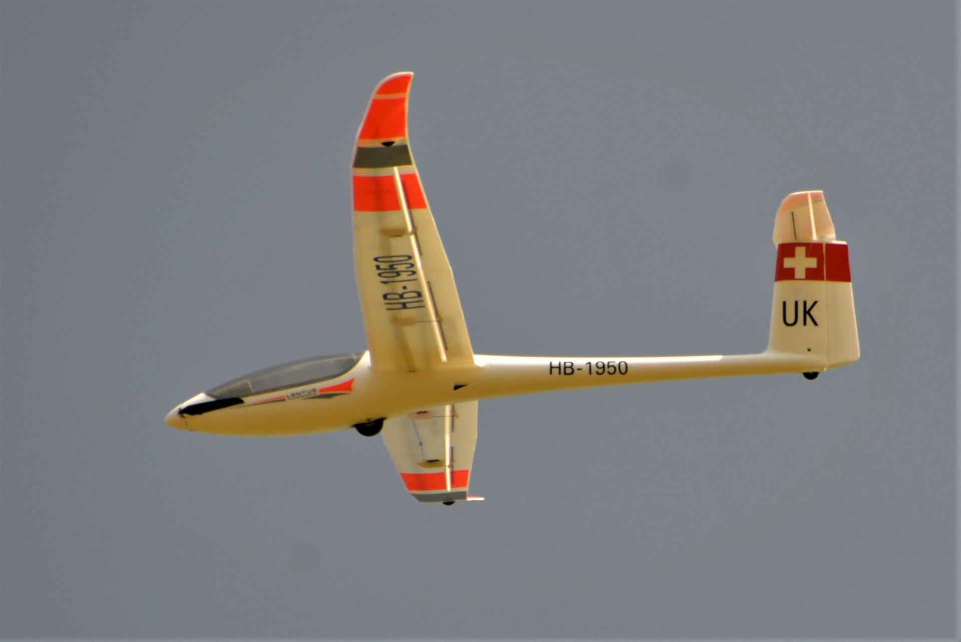 DSC_7373 (2).JPG