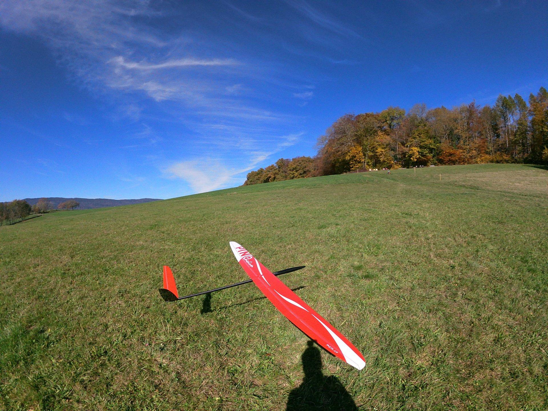 pino_landing.jpeg