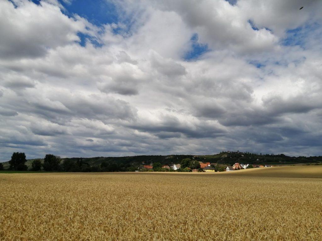 rc-paragliding-flugplatz-dorndorf-hangfliegen-19.jpg