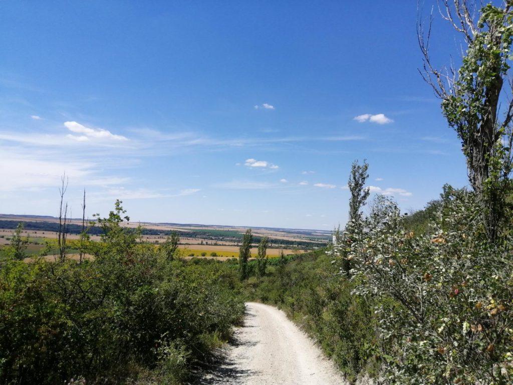 rc-paragliding-flugplatz-dorndorf-hangfliegen-7.jpg