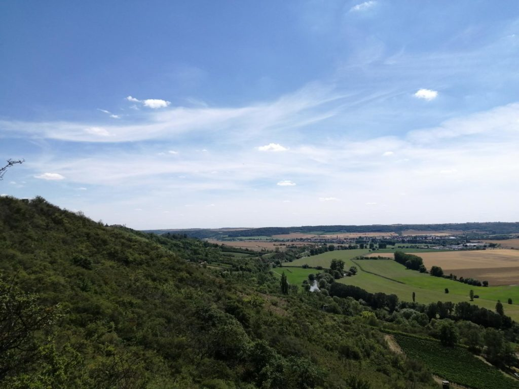rc-paragliding-flugplatz-dorndorf-hangfliegen-8-1024x768.jpg