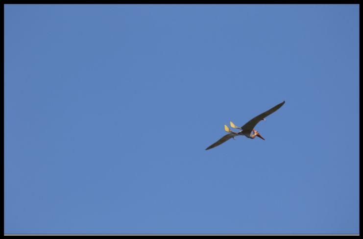 Screen Shot 09-10-21 at 12.21 PM 001.jpg
