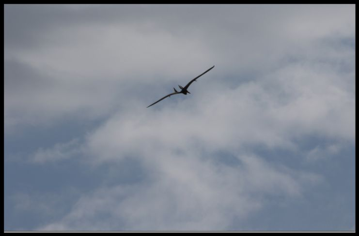 Screen Shot 09-10-21 at 12.21 PM 003.jpg