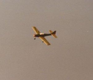 Monza Flug in Kiel.JPG
