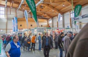 Messe Sinsheim 2017-4485.jpg