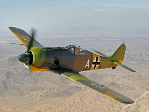 FW 190_1.png