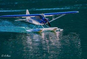 comp_Wasserflug Sonntag1-0351.jpg