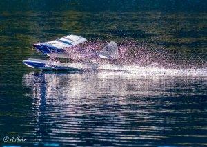 comp_Wasserflug Sonntag1-0338.jpg
