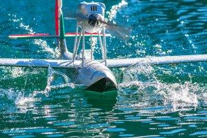 comp_Wasserflug Sonntag1-0603.jpg