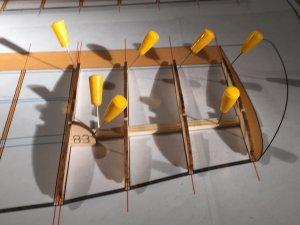 Fl-wingtip 02.jpg