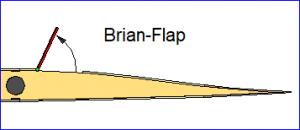 Brian-Flap.png