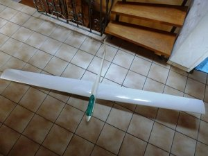 Carrera ASW17 2,2m (2).JPG