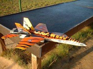 F18_tigerm.JPG