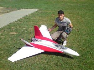 Hornet2.JPG