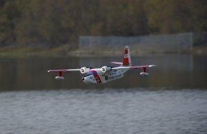 Albatross_42.jpg