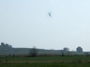 Modellflug-6.jpg