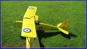 comp_Tiger Moth Gerhard 006.jpg