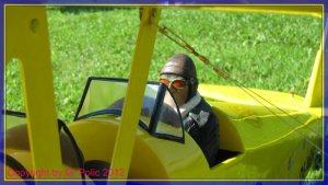 comp_Tiger Moth Gerhard 008.jpg