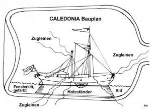 Caledonia_22_Zeichnung.jpg